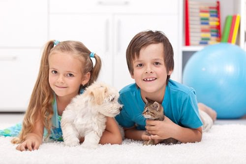 9 Signs Your Kids Are Ready for a Pet