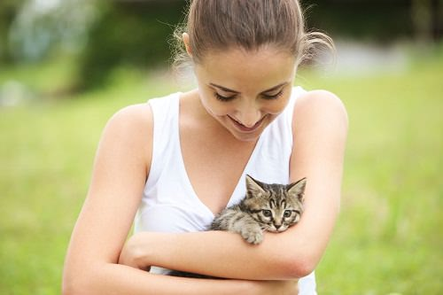 7 Important Tips for Adopting a Stray Cat