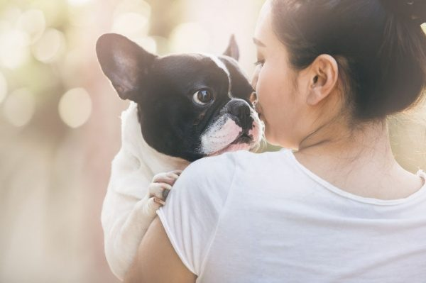 10 Cool Boy Dog Names