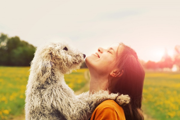 7 Fun Ways to Spend Summer with Your Pet